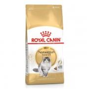 Royal Canin Norwegian Adult сухой корм для кошек породы норвежская лесная